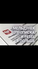 Прописка Песель Гданськ Познань Быдгощ