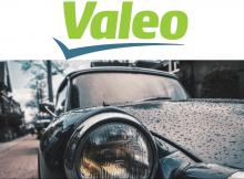Упаковщик на Автозавод Valeo/Мужчины, женщины/пары