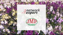 Упаковка | Уход за Орхидеями | Теплица JMP Flowers