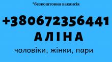 Упаковщик косметики DOVE мужчины/женщины/пари
