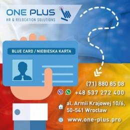Оформить BLUE CARD / Niebieska karta для программ