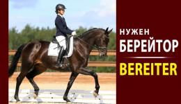 Берейтор, Bereiter, Обучение лошадей в Германии