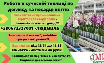 Упаковка цветов/ЗП до 4500 зл нетто/без ночных