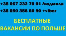 Фасовка чая/ЗП  до 4300 zl/Бесплатное  жилье