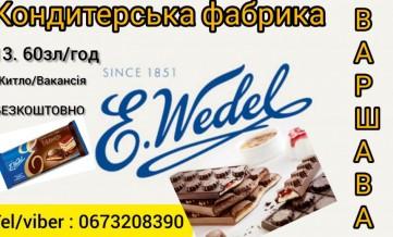 Работа в Польше на кондитерской фабрике Wedel