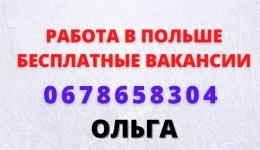 Рабочий на склад супермаркета Biedronka