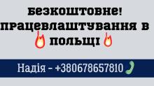 Працівники складу в інтернет магазин STIHL /28 ТИС