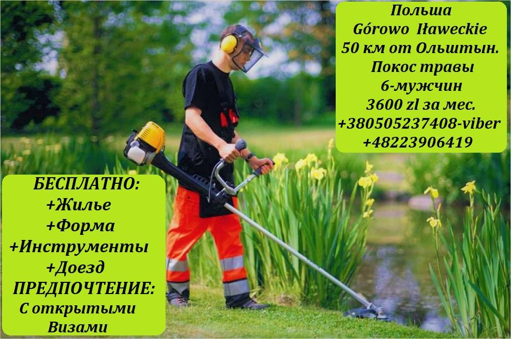 Сотрудник на покос травы.Бесплатная вакансия