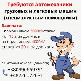 автомеханик специалист и помощник