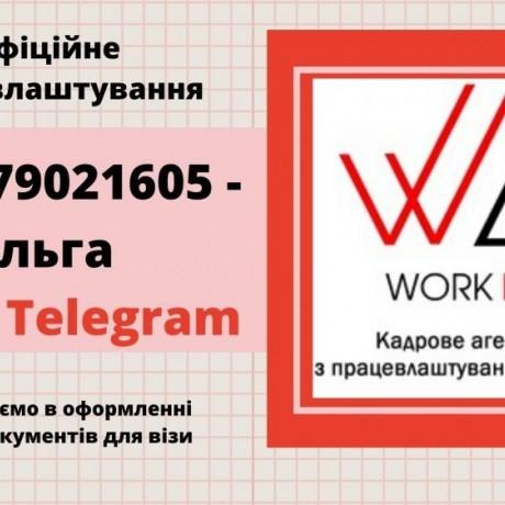Упаковщик дезодорантов AXE|Ставка13,32-14,32zl/ч
