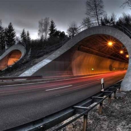 Помощник на строительство магистрального тоннеля